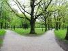 park_31